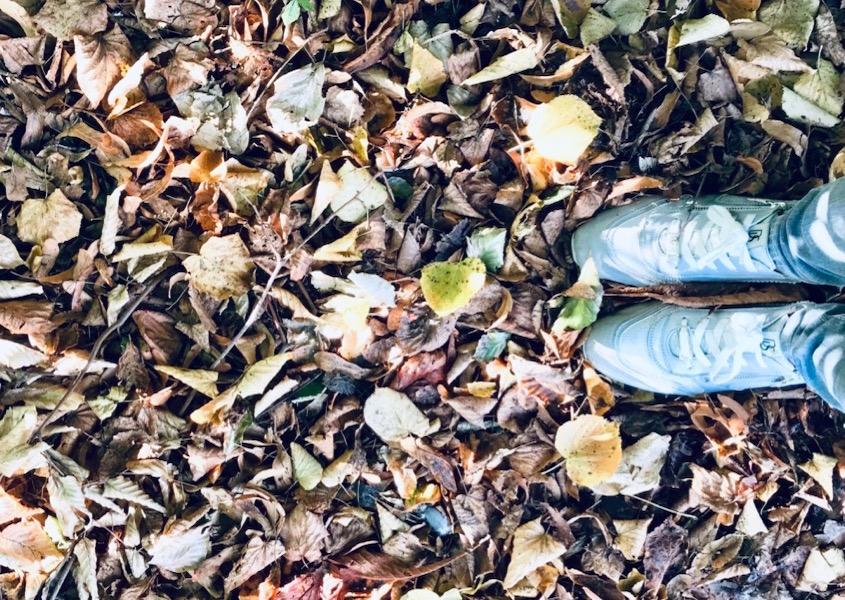 efteråret